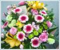 Kwiaty na telefon - żywiec bielsko tychy pszczyna!