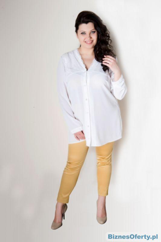 727e8cb388 Sprzedam sklep - ubrania dla puszystych pań - Biznes Oferty.pl