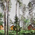 Dobrze prosperujący ośrodek wypoczynkowy w lesie nad morzem