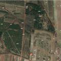 Sprzedam grunt (7 działek) 11 ha, w tym 2 ha pod zabudowe