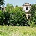 Pałac do remontu na sprzedaż 950 tys. zł