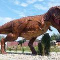 Sprzedam park rozrywki i dinozaurów