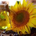 Olej słonecznikowy 1 klasy