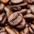 Dystrybucja kawy znanej restauratorki