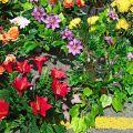 Kupię każdą ilość sztucznych kwiatów, producent kompozycji