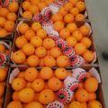 Pomarańcze w skrzynkach hurt