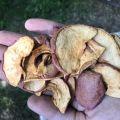 Jabłko plastry chips suszone karma dla zwierząt