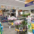 Sprzedam dochodowy biznes – nieruchomość pod wynajem w okolicy Gniezna