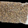Orzechy włoskie pakowane próżniowo Amber Light 30% połówki