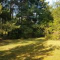 Działka z potencjałem w otulinie Chojnowskiego Parku Krajobrazowego