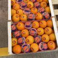 Hiszpańskie pomarańcze
