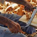 Nawiążemy współpracę z deweloperem - domy z drewna